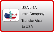 USA-L1 visa